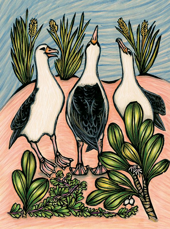 Three albatrosses stretch their necks to the sky as of dancing in this hand-colored block print.