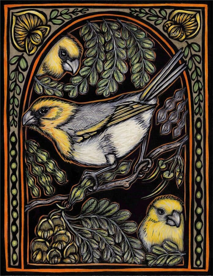 This artwork is a hand-colored block print. Three yellow and grey birds sit on branches and behind leaves. The bird is a Palila Peekaboo.